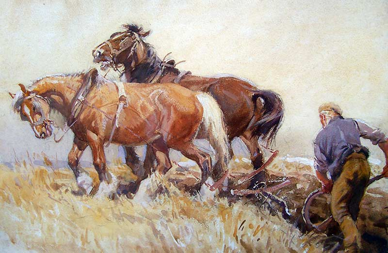 Horses Plough, Soper Collection