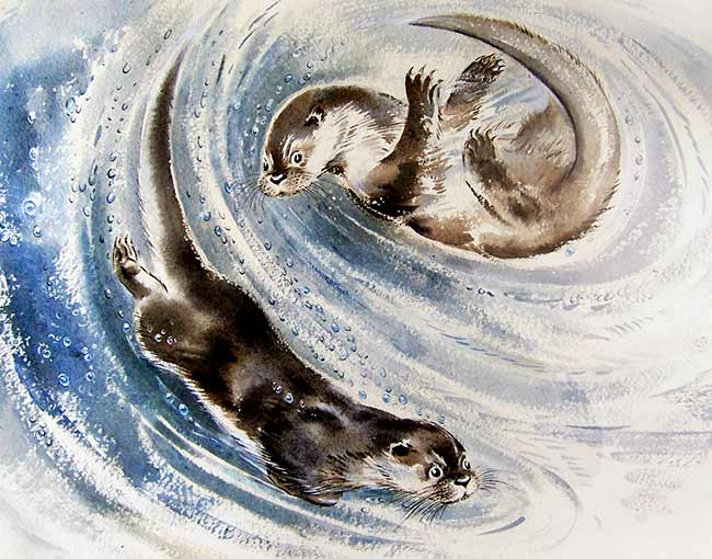 Otters - The Soper Collection
